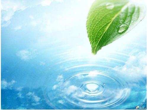 なぜ人体にとって「水」は大切なのでしょうか?