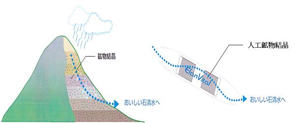 エランビタールの水改質の原理